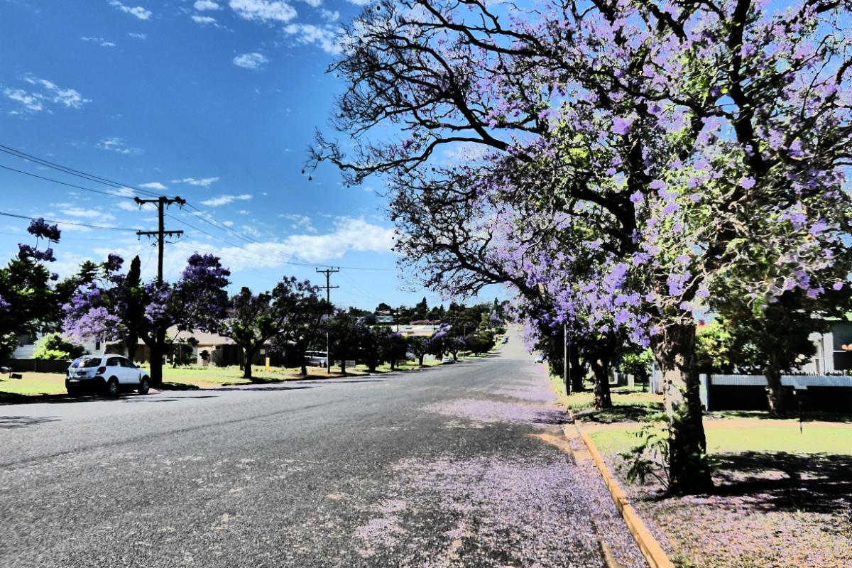 2020 Broken Hill Day Thirteen 13