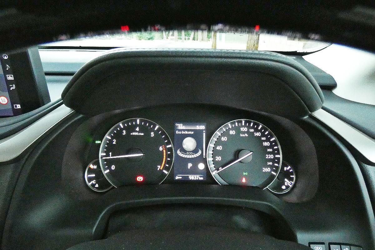 2021 Lexus RX300 Sports Luxury 1