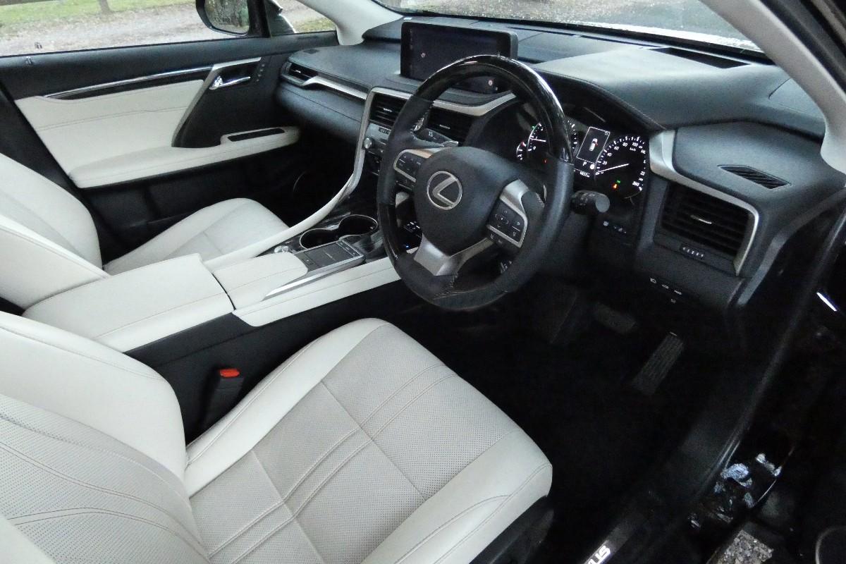 2021 Lexus RX300 Sports Luxury 2