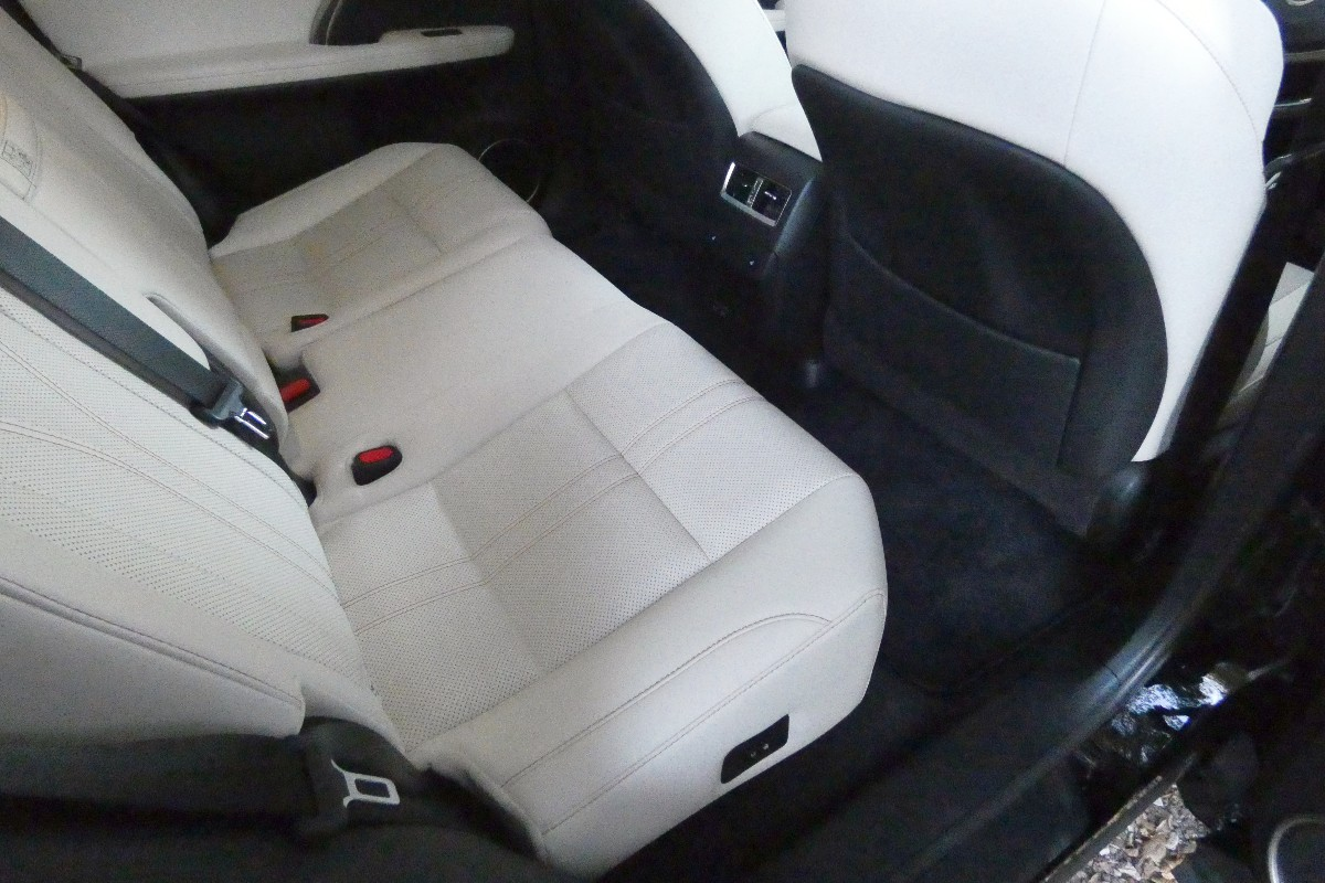 2021 Lexus RX300 Sports Luxury 3
