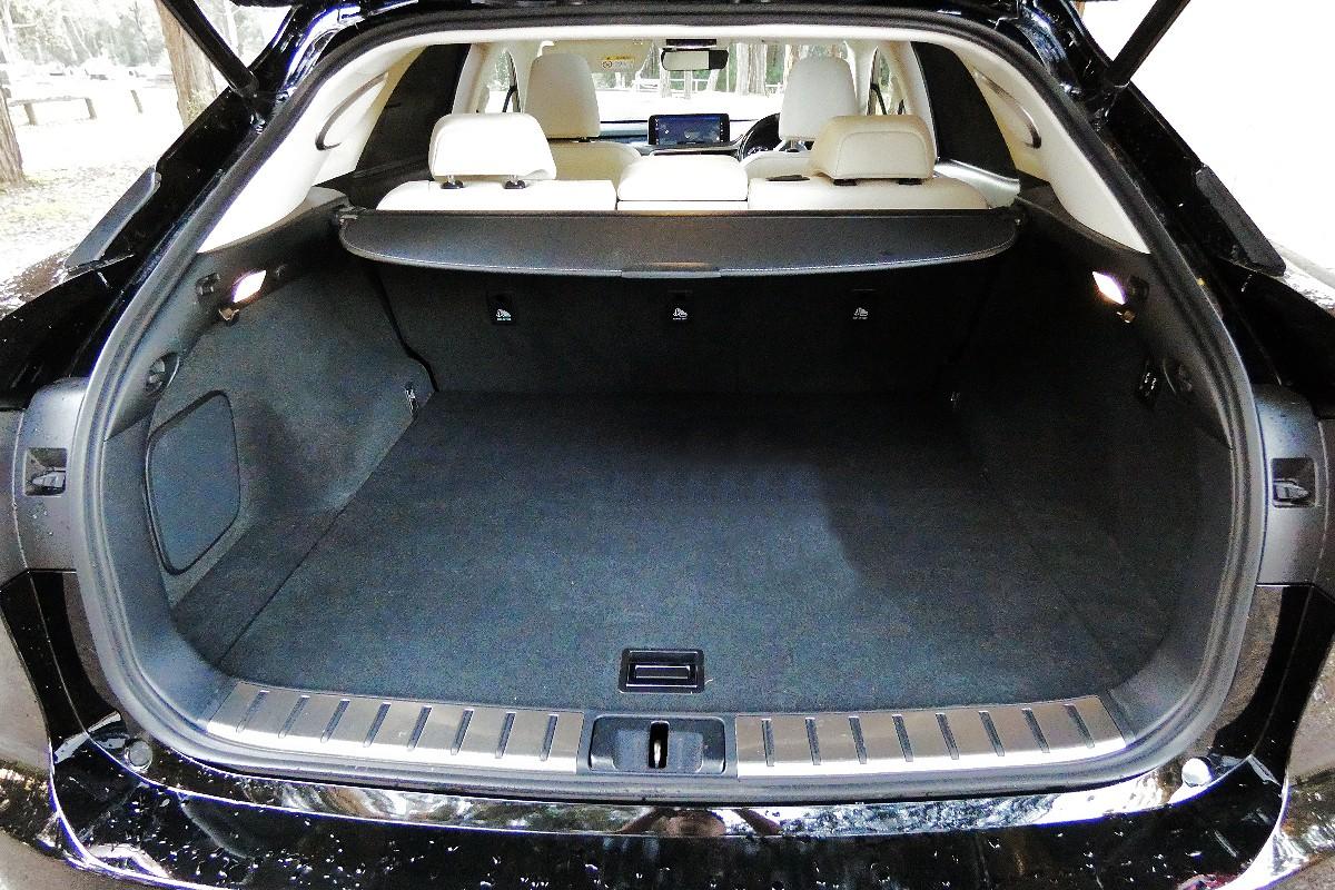 2021 Lexus RX300 Sports Luxury 4