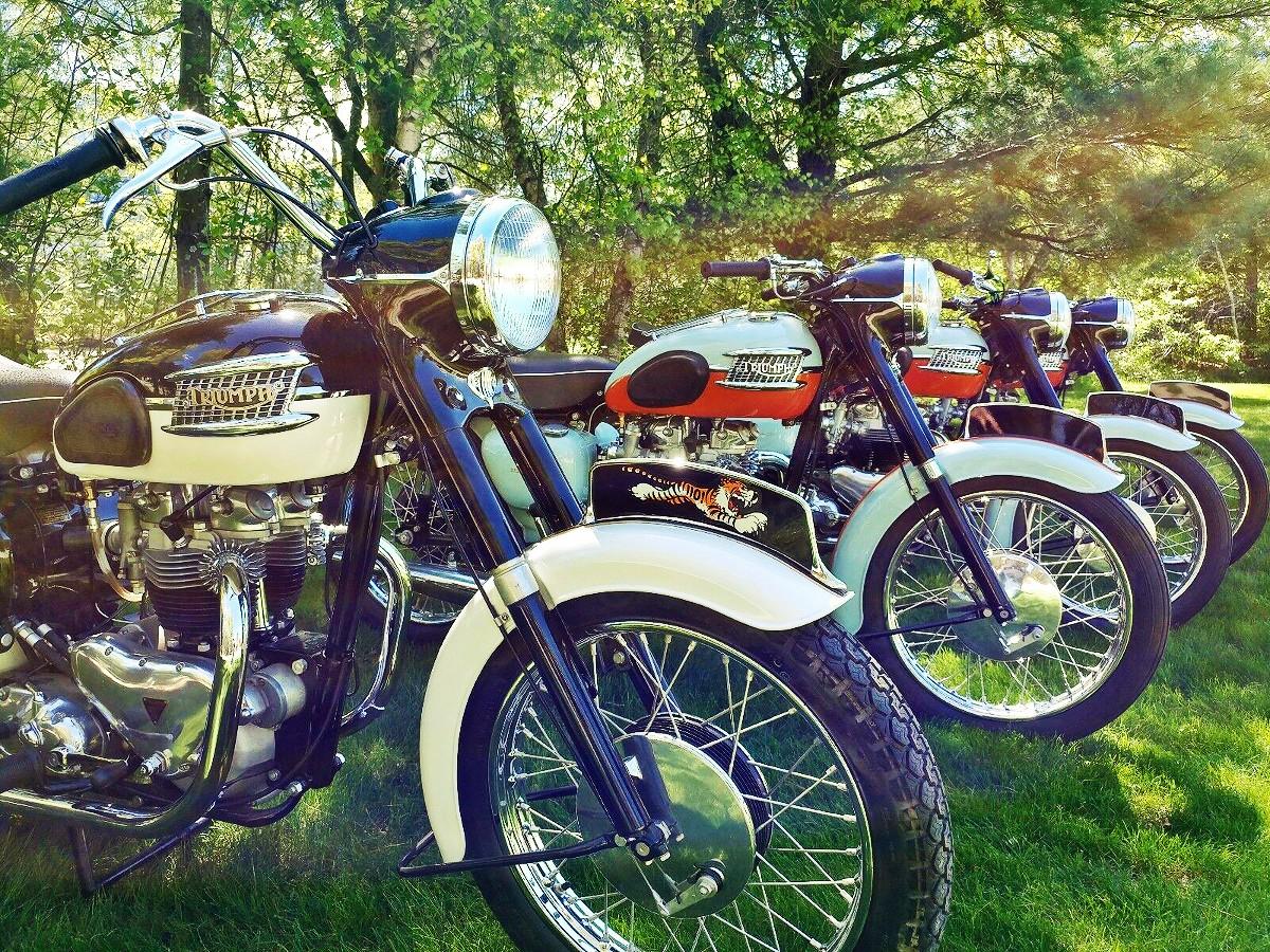 Classic Triumph Bonneville 6