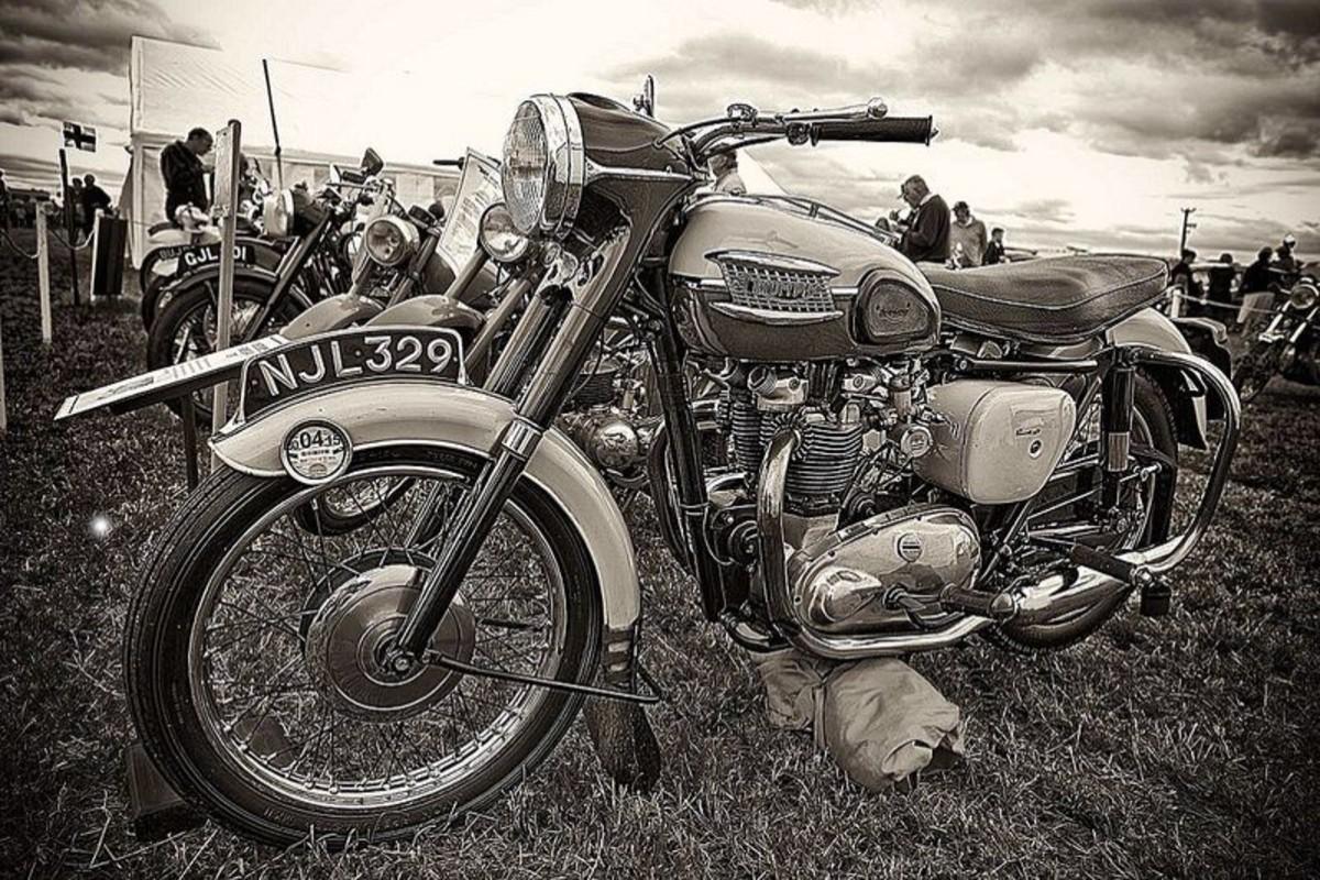 Classic Triumph Bonneville 7